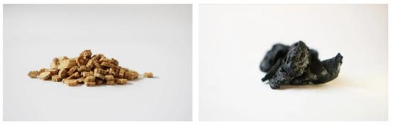 馆内制剂:和顺堂的八珍汤真能补气血防脱发?
